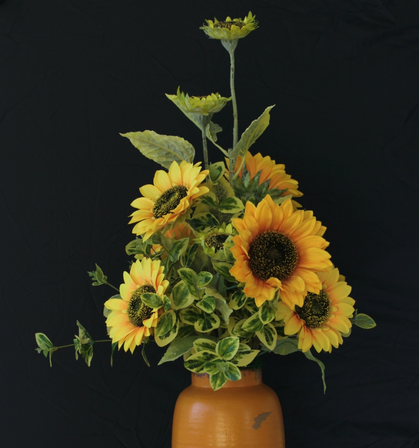 sunflower5_1