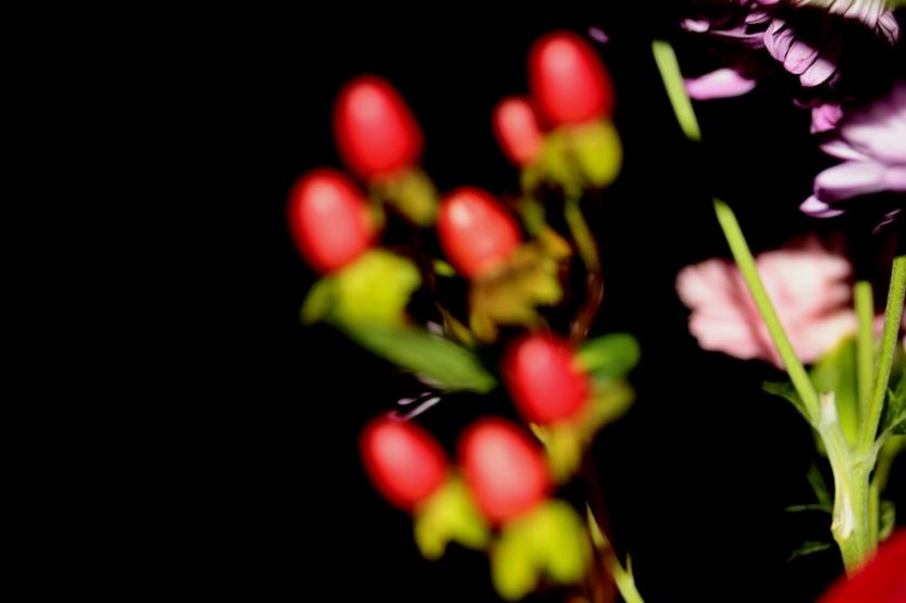 flower10202