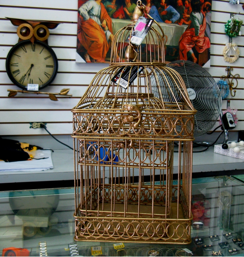 golden20cage20on20sale