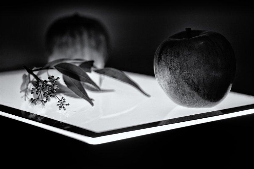 Apples Sitting on Light Box